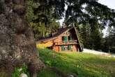 Lesena okna in polkna Chalet Alpinka Krvavec